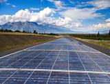 De hoogste ZonneModule van het Zonnepaneel Perlight van de Hoge Efficiency van de Leverancier Poly250W voor het Systeem van de ZonneMacht