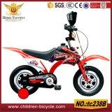 Irgendeine Farben-Bewegungsmodell-Fahrt auf Minifahrräder für Kind