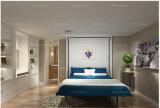 Sepsion는 캐비닛 Fj를-14 접는 벽 침대 홈 가구를 회전