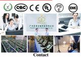 Magischer Effekt Cryolipolysis Bruch-Schönheits-Maschine HF-Microneedle (Mr18-2s/CE)