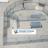 Hoher Zink-Beschichtung-Viehbestand fechten verwendet für Vieh/Vieh-Hürden mit billig (XY-003)