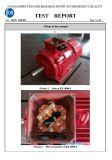 Moteur électrique triphasé de rapport des essais d'Ie2 Ye2 Saso Ie2