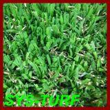 Superação elevada que ajardina a grama com fio da W-Forma