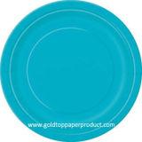 Celebración y partido de las placas de papel de la cena