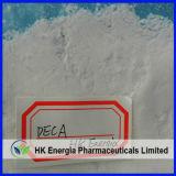인기 상품 신진대사 스테로이드 원료 Nandrolone Decanoate 최신 분말