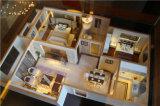 Modèle d'immeubles d'ABS de qualité/fabrication de modèle/fabrication architecturales modèle de Chambre