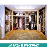 Ruimte sparen de Witte Gang van de Kleur in de Garderobe van de Kast voor Slaapkamer (ais-W178)
