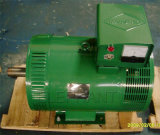 30kw Generator Head WS Altenrator Brush Dynamo