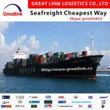 Transporte do frete de oceano de Shanghai/Qingdao/Dalian de China a Qasim/Paquistão