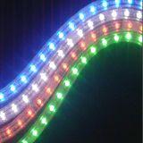 LED 공장에서 네온 코드 훈장 지구 빛
