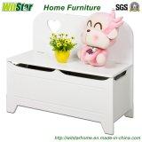 衣服およびおもちゃ(子供の家具のためのWS16-0034、)のための現代子供の収納箱