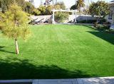 인공적인 잔디밭 양탄자를 가진 주거 플라스틱 가정 정원 잔디