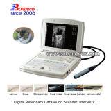 varredor veterinário de Doppler do instrumento do equipamento do ultra-som 4D
