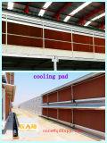 高品質のプレハブの家の構築を持つ家畜の家禽装置