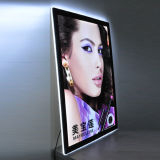 Halo Acrylic Sheet DEL Crystal Light Box pour Advertizing Display