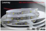 3年の保証24Vの白いカラーの一定した流れLEDのストリップ