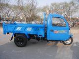 택시를 가진 Wuzheng 세 배 바퀴 차량