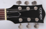 Электрическая гитара/электрические басовые гитары/музыкальные аппаратуры (FG-307)