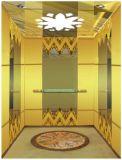 Elevatore del passeggero dell'azionamento di CA Vvvf senza stanza della macchina (RLS-205)