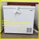 Gleichstrom angeschaltene 12V 24V Solarkühlraum-Kühlraum-Gefriermaschine