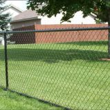 Frontière de sécurité enduite de maille de maillon de chaîne de PVC/frontière de sécurité de maillon de chaîne acier inoxydable