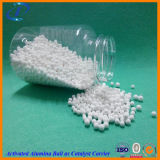 (AA-D180/AA-D250/AA-D300) Diseccante attivato dell'allumina