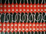 2LED de Fabriek van de module 1W verkoopt direct