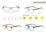 형식 도매 아세테이트 Eyewear 새로운 안경알 광학적인 가관 프레임 Cc1723