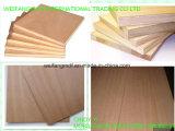 Fabricación de China de madera contrachapada de la madera contrachapada/Okoume/Bintangor