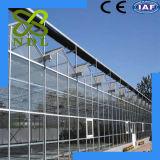 Preservação do calor, baixa estufa do preço, a durável e a anti da radiação de PC da placa