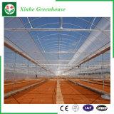 Multi Überspannungs-grünes Plastikhaus für das Pflanzen