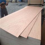 madera contrachapada del anuncio publicitario de 15m m B/Bb Bintangor