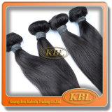 Malaysisches Haar einschlagRemy natürliches Haar