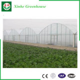 Invernadero vegetal de la película plástica de la flor del Multi-Palmo