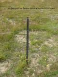Schwarzes Bitumen angestrichener y-Zaun-Pfosten-/Stern-Pfosten