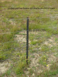Черный битум покрасил пикетчика столба/звезды загородки y