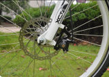 Nueva bicicleta lateral del tirón E de 250 W