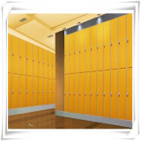 Hölzerne lamellenförmig angeordnete Qualität des Entwurfs-HPL/Compact