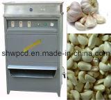 600kgs/Hour 큰 마늘 껍질을 벗김 기계