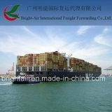 Transporte do oceano do agente de transporte de Guangzhou que envia a grande logística dos artigos de China a Colômbia