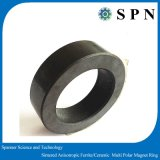 Ferrito di ceramica Multipoles sinterizzato magnete di memoria per il ventilatore del motore