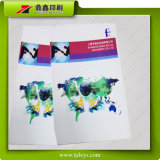 Impression de livres professionnels / Impression de catalogue / Brochure Printing in China