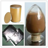Extrait d'astragale, extrait de racine d'astragale, astragale P.E
