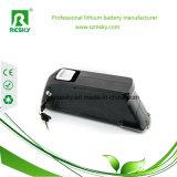18650 de Batterij 48V 10.4ah van het lithium voor 500W Elektrische Fiets