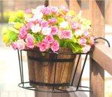 Metal Low Price Factory Pot de pot de fleur