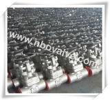 Valvola di globo d'acciaio fucinata A105 (J41Y)