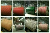 Новая мраморный конструкция PPGI/PPGL Prepainted мраморный стальная катушка