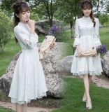 Das heiße Verkaufs-Sommer-Abnützung-moderne Frauen-Kleid