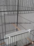 Prijs Birdcage van de Levering van de fabriek de Hoogstaande en Concurrerende