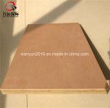 madeira compensada do eucalipto da melamina de 18mm
